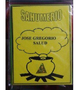 Sahuimerio, San José Gregorio